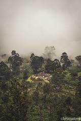 Burnt Bungalow (Chrometrekslk) Tags: srilanka teaestate mistymountains