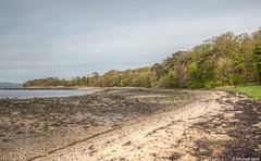 Firth of Forth shoreline (Michael Leek Photography) Tags: firthofforth edinburgh coast tide lowtide beach shoreline sea scottishlandscapes scottishcoastline michaelleek michaelleekphotography hdr highdynamicrange scotland scotlandslandscapes shore coastline forth awesomescotland thisisscotland