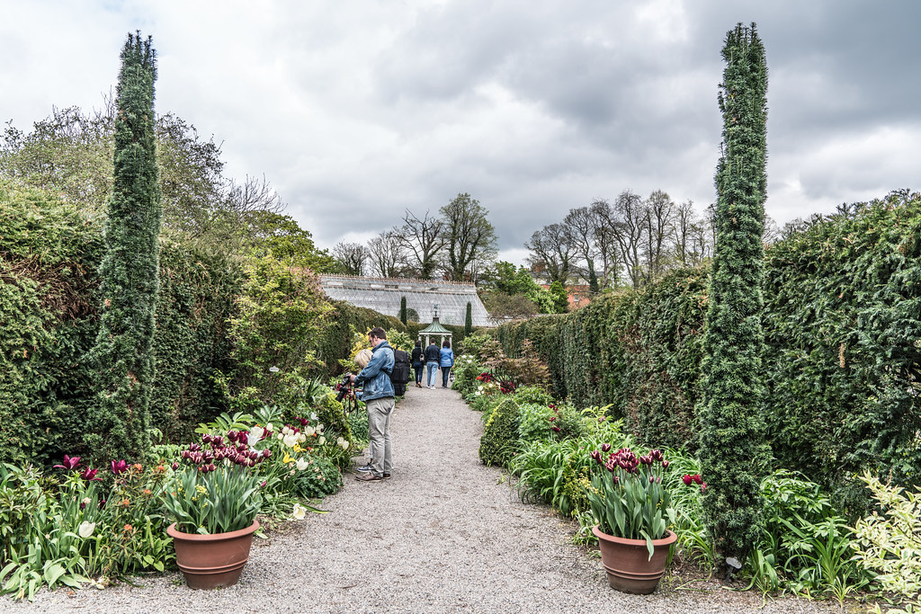 FARMLEIGH HOUSE [ GROUNDS AND GARDENS PHOTOGRAPHED APRIL 2017]-127217