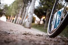 Distància focal: alegre i ciclista - 24è dia 30DEB (xavi.calvo) Tags: 30 días en bici 30daysofbiking instagram instagood instaday instabike instabikes biker ciclista ciclismo altrabajoenbici enbicixbcn bike bcn bikelove instabicycle ridebarcelona amics de la alegre 30deb 30dob bicicleta biciurbana mejorenbici movilidadsostenible monocromático cavalldacer