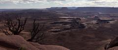 Grand View Point Overlook, Canyonlands. (XbinData) Tags: canyon usa canyonlands landscape nature desert utah sky park nationalpark america