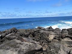 Galapagos - San Cristobal-71