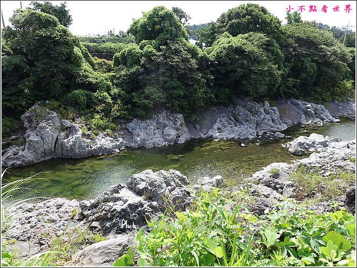 濟州島牛沼河口 (10).JPG