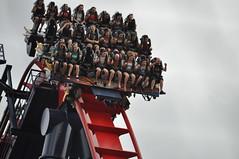 Adrenaline Junkies (littlestschnauzer) Tags: park family summer vacation usa holiday gardens tampa scary ride florida descent parks drop front row rush scream theme rollercoaster coaster adrenaline thrill steep busch junkies plummet 2014 sheikra