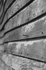 Barn Boards (shutterbusterbob) Tags: old blackandwhite bw barn canon eos washington boards nail washingtonstate canoneos skagitvalley skagitcounty northernstate weatherd sedrowoolley 70d sidding eoscanon canoneos70d canon70d eos70d northernstaterecreationalarea northernstatedairyfarm