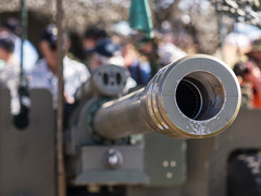 (Nimeral1) Tags: army bokeh military barrel airshow cannon artillery abbotsford