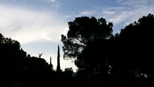 Sunset on Technion (Haifa, Israel)