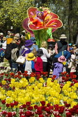Floriade Canberra (Kokkai Ng) Tags: park city travel blue red people flower tree tourism beautiful yellow horizontal female outdoors spring flora crowd posing australia tourist flowerbed event brightlight tulip canberra tall activity performer spectator stilts photographing clearsky stiltwalker floriade capitalcities groupofobjects backgroundpeople largegroupofobjects traditionalfestival commonwealthpark beautyinnature placeofinterest stagecostume fancydresscostume publiccelebratoryevent