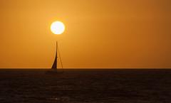 Sail at Sunset (Scott_Nelson) Tags: california sunset la losangeles unitedstates santamonica socal venicebeach
