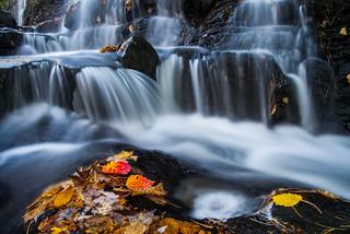 Beckett's Creek Falls