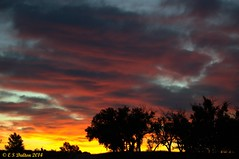 October 1, 2014 - Sunrise at the Rocky Mountain Arsenal. (Ed Dalton)