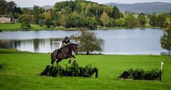 Coniston Hunter Trials 3 (henderz86) Tags: horse nikon equestrian coniston d5100