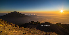 Merbabu Sunrise. (Ollie Smalley Photography (OSP)) Tags: morning blue light sunlight mountain mountains detail beautiful yellow contrast sunrise indonesia landscape outdoors gold dawn volcano golden early asia southeastasia warm shadows view natural altitude sony perspective warmth sunny bluesky nopeople summit vista colourful fullframe volcanic indo ff breathtaking clearsky merapi highaltitude newday uwa mountainous ultrawideangle 14mm samyang mirrorless a7r mtmerbabu samyang14mmf28 samyang14mmf28mf sonya7r ilce7r merbabusunrise