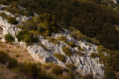 Karstic landscape (paul indigo) Tags: trees mountain rocks sardinia limestone karst bushes dorgali karstlandscape paulindigo