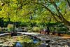 Secret Garden Stories (Eddie C3) Tags: nyc newyorkcity fountain gardens centralpark manhattan botanicalgardens nycparks conservatorygarden thesecretgarden burnettfountain franceselizahodgsonburnett
