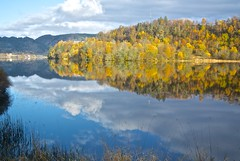 the most beautiful season (Josseline B) Tags: photostream