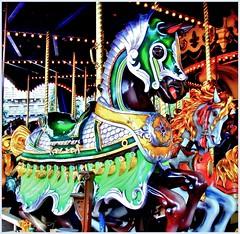 Green Horse (Leonce Markus) Tags: blue horses horse orange color green colors yellow jaune cheval couleurs disneyland vert bleu manège couleur chevaux turnabout
