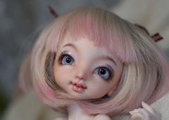 _DSC1717 (olesyagavr) Tags: momo dollpamm