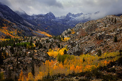 Bishop Canyon Early Storm (DM Weber) Tags: california autumn trees snow storm mountains fall weather canon rocks cloudy overcast canyon september aspens bishop conifers 2014 eos5dmk2 psa148 dmweber