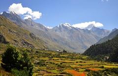 Chitkul Village,Sangla,Himachal (mala singh) Tags: autumn india mountains village ngc valley himalayas himachalpradesh sangla chitkul