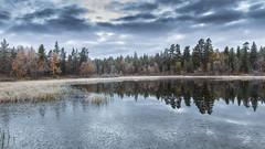 lapland autumn (sami kuosmanen) Tags: sky lake ice nature forest suomi finland landscape pond inari north lapland maisema mets lappi luonto jrvi j lampi taivas pohjoinen kaamanen pirtujrvi
