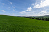 "Green Field (M J Robinson Photography) Tags: green landscape photography scotland nikon farm hill crops moray auchindoun auchindouncastle d5100 ""nikond5100"" ""farmland"""
