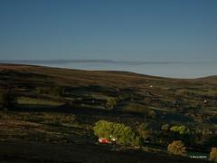 Waiting For The Sun (Steve_Mallett) Tags: sunrise landscape pembrokeshire pembs carnffoi olympusem1