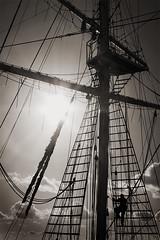 Rigging (The Image Den) Tags: sky monochrome silhouette clouds climb mast tallship rigging sailingship lordnelson sepiaish contrajour jubileesailingtrust