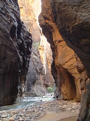 P9050043 (bluegrass0839) Tags: canyon national hoodoo bryce zion zionnationalpark brycecanyon nationalparks narrows hoodoos horsebackride parkthe