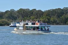 Riverlight (Gillian Everett) Tags: ferry nikon australia queensland noosa noosariver 18135 riverlight chaplinpark