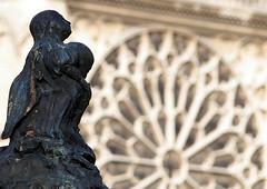 Notre Dame de Paris ~ MjYj (MjYj ~ IamJ) Tags: light sunset woman sun paris texture seine soleil solitude time femme stlouis pont eden temps tones reflets notredamedeparis ville tournelle stegeneviève p9210070 mjyj mjyj©