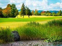 PhoTones Works #5869 (TAKUMA KIMURA) Tags: autumn golf landscape scenery natural    kimura  takuma  gh4   photones