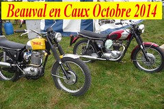 Beauval en Caux Octobre 2014 BSA Victor Triumph Bonneville (barbeenzinc) Tags: bike cross victor motorbike triumph moto motorcycle british tt 441 motocross bonneville scramble ancienne bsa motorrad b44 britishbike beauval toutterrain anglaise britishmotorcycle b44vs beauvalencaux bsasingle victorspecial beauvalencaux2014