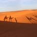 Sunrise Dunes of Merzouga_8283