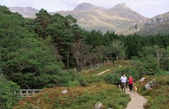 Ariundle-33.JPG (MyParkScotland) Tags: trail scotspines reserve recreation path nnr naturereserve nationalnaturereserve mountain hiresjpegs footpath fence dogwalking dogwalker dog bridge ariundle33jpg ariundle access ariundleoakwoodnnr
