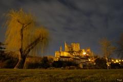 Les Chateaux de Chauvigny (vepephotos) Tags: chauvigny nuit chateaux saule herbe poitou vienne pose longue fuji xpro1 samyang 12mm nuages