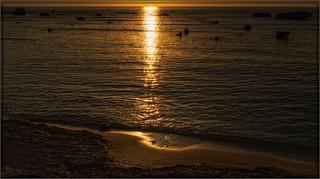 8068-  Life is a Beach