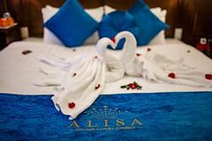 Halong Alisa Cruise
