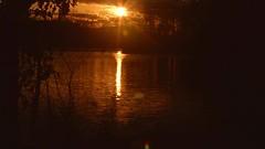 Golden Marsh (Josh Rokman) Tags: sun marsh golden sunset goldensun goldensunset nikond7000 nikond7000video nature outdoors outdoorsvideo music video