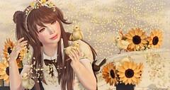 The Seasons Story ... (Coqueta Georgia) Tags: anc yourdreams more ayashi