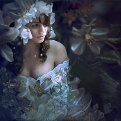 'Apple Blossom' (Natasha Root Photography) Tags: natasharootphotography inspire imagine create painterly apple blossoms surreal portrait blooms music lyrics