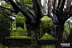Urns at Highgate (avalard) Tags: highgate highgatecemetery london graveyard urn green tree canon600d