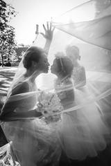 Caroline_Eric_LaV_068.jpg (MaryseCreation) Tags: planner planification 20160903 mariage carolineeric montreal lavimage wedding creationsmarysenoel 2016
