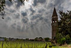 Mazzorbo Vineyard Clouds (irelaia) Tags: mazzorbo vineyard clouds venice italy
