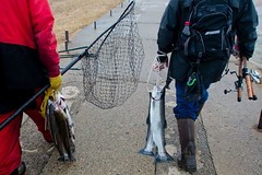 Warm weather brings improved fishing prospects for Michigan anglers (michiganapparelts) Tags: livnfreshcom warm weather brings improved fishing prospects for michigan anglers