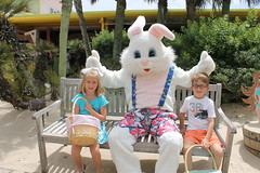 Easter Bunny 053