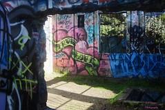 DSC05573 (intothesierra) Tags: rodeobeach marincounty goldengatebridge friendship ocean sanfrancisco roadtrip graffiti life