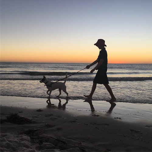 Boy and dog.