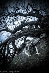 Beneath the tree... (silver lining studios) Tags: witch horror ghost ghoul terror blonde white black tree branches dark shadow shadows skull