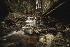 Strümpfelbachtal (SVNKNR) Tags: germany swabia landscape nature animals cow cows bokeh sony sonyalpha alphaddicted alpha6500 a6500 sigma walimex samyang rokinon longexposure waterfall creek river water